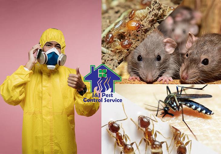 Commercial Pest Control Quezon City