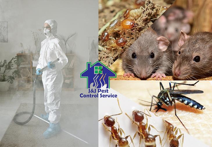 Residential Pest Control Quezon City