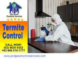 Termite Control Manila City Metro Manila
