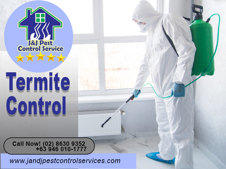 Termite Control Quezon City Metro Manila